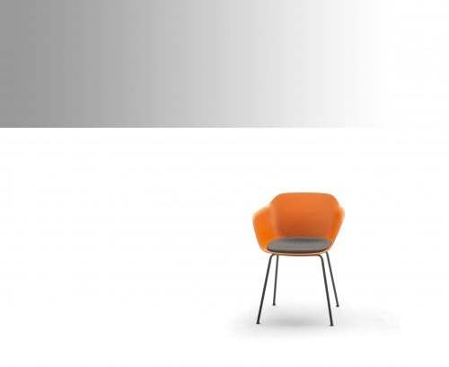 Cadires de polipropilè o similars