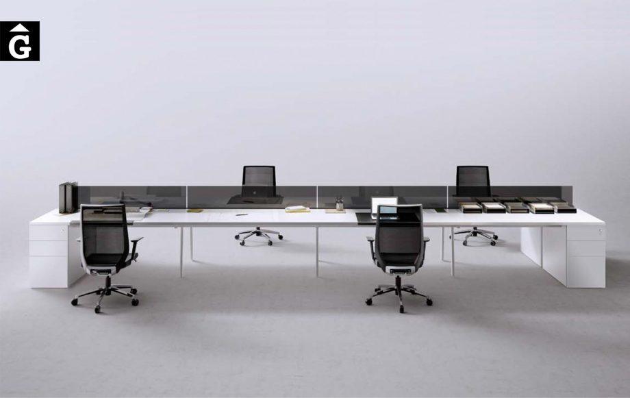 Taules de treball sistema M10 | Treballs en grup | Forma 5 | mobiliari d'oficina molt interessant | mobles Gifreu | botiga | Contract | Mobles nous d'oficina