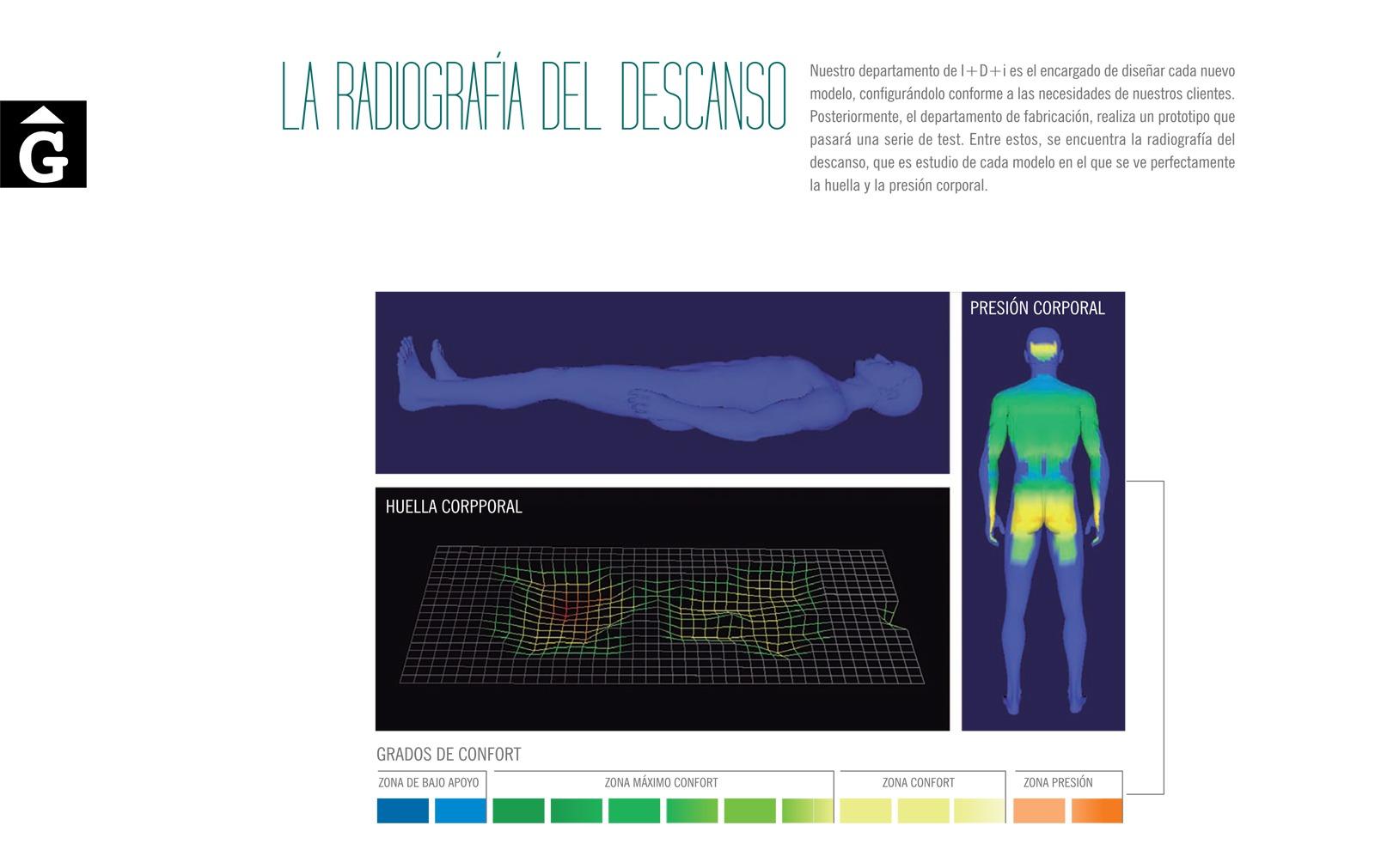 6-radiografia-del-descans-terxy-by-mobles-gifreu-girona-fabricants-de-somnis-matalas-matalassos-somier-somiers-coixi-coixins-de-qualitat-realitazats-amb-els-cinc-sentits