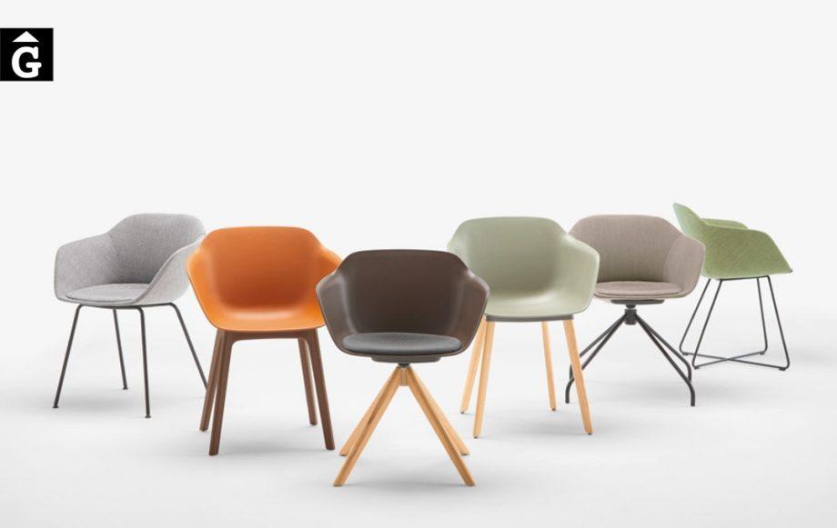 Cadira amb braços Taia | Diferents opcions pota metall i fusta | Inclass cadires tamborets i taules | mobles Gifreu