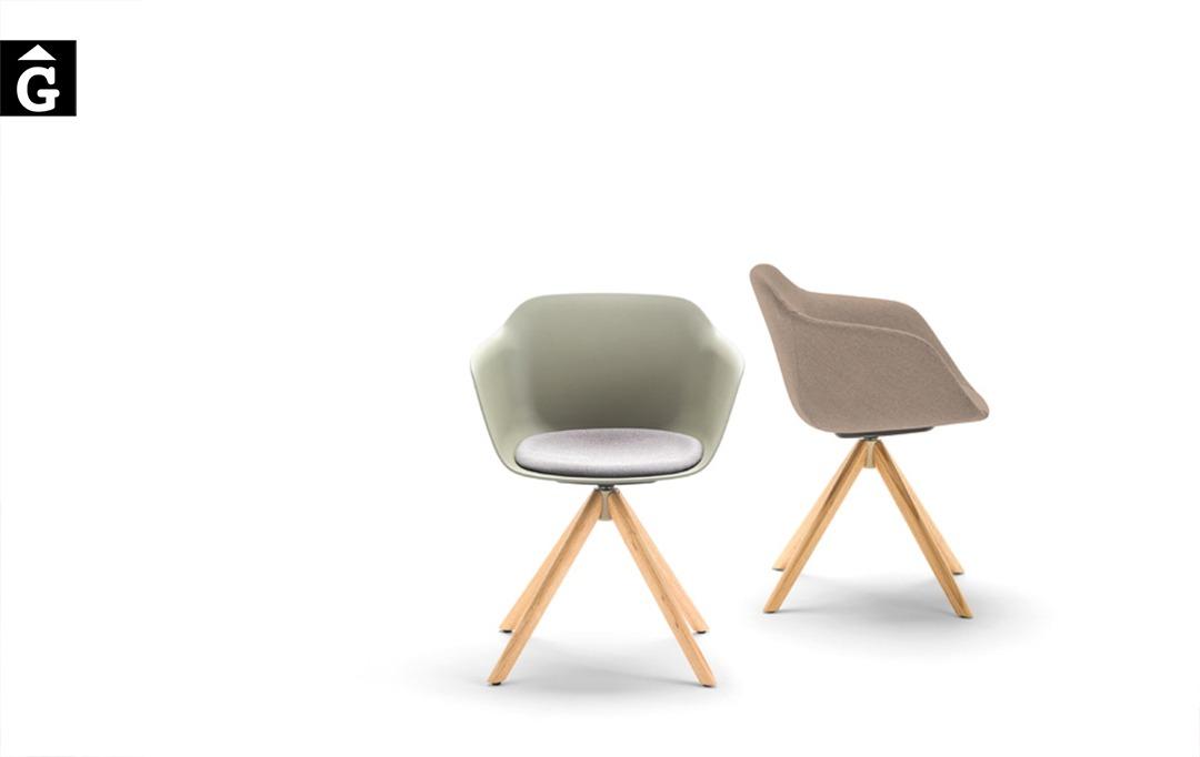 Cadira Taia polipropilè i pota central fusta | Inclass cadires tamborets i taules | mobles Gifreu