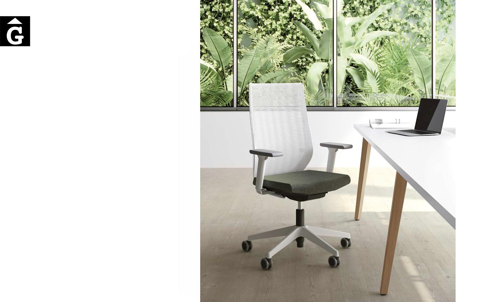 Cadira operativa Eben | Disseny Ito design | Imatge principal | Forma 5 | mobiliari d'oficina molt interessant | mobles Gifreu | botiga | Contract | Mobles nous d'oficina